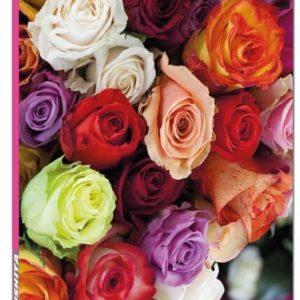 Blank Book - Roses