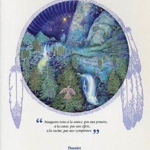 Revue Plume de l'Aigle N°11